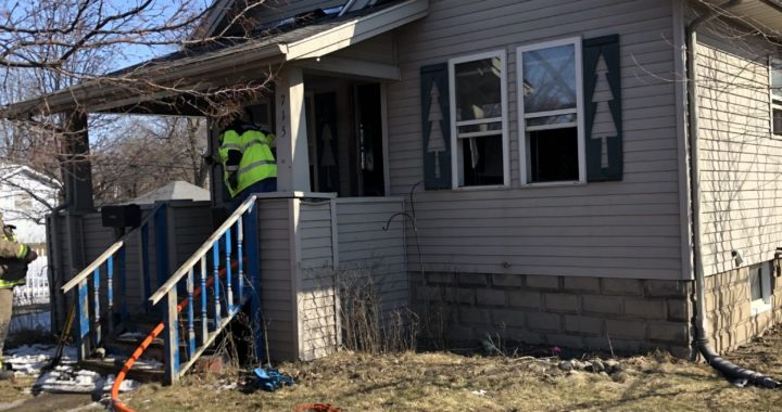 One dog dies, two saved in Caro house fire