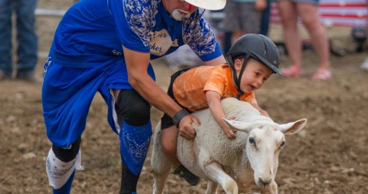 Did 'ewe' have fun? Fair sets one-day attendance record